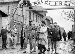 una imatge de l'alliberament del camp d'extermini d'Auschwitz el 27 de gener de 1945